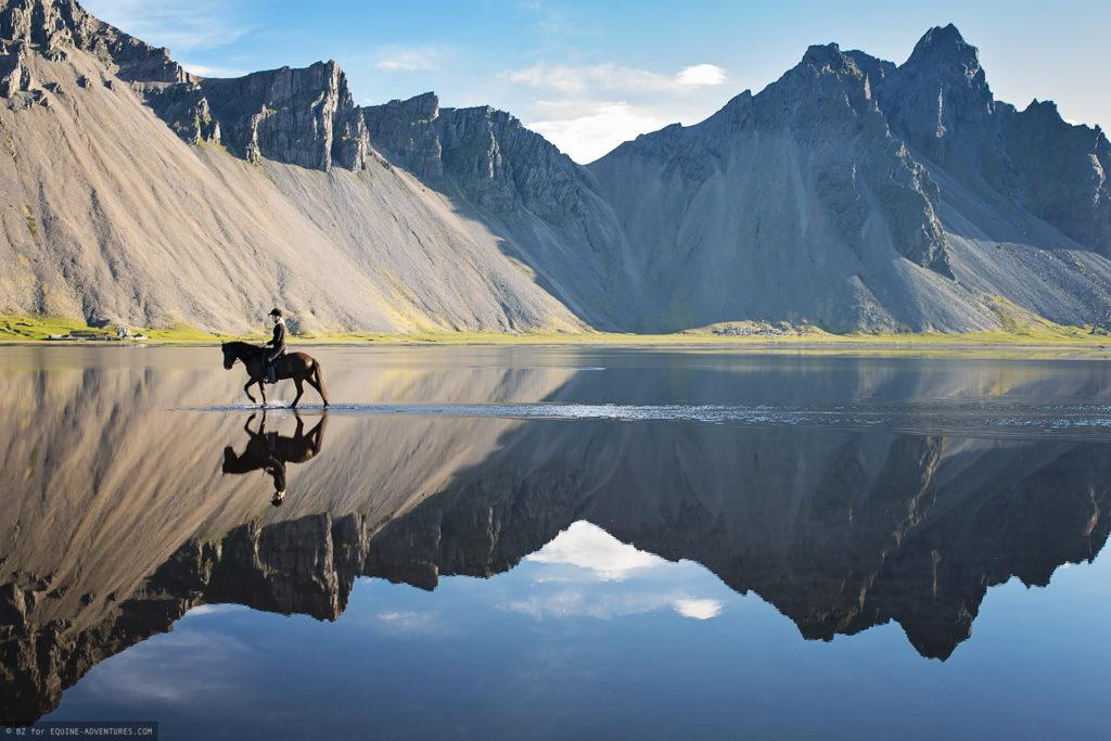 islandpferd-bergpanorama-spiegelung-003