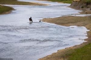 ea-fotoreise-island-ausritt-fluss-hund