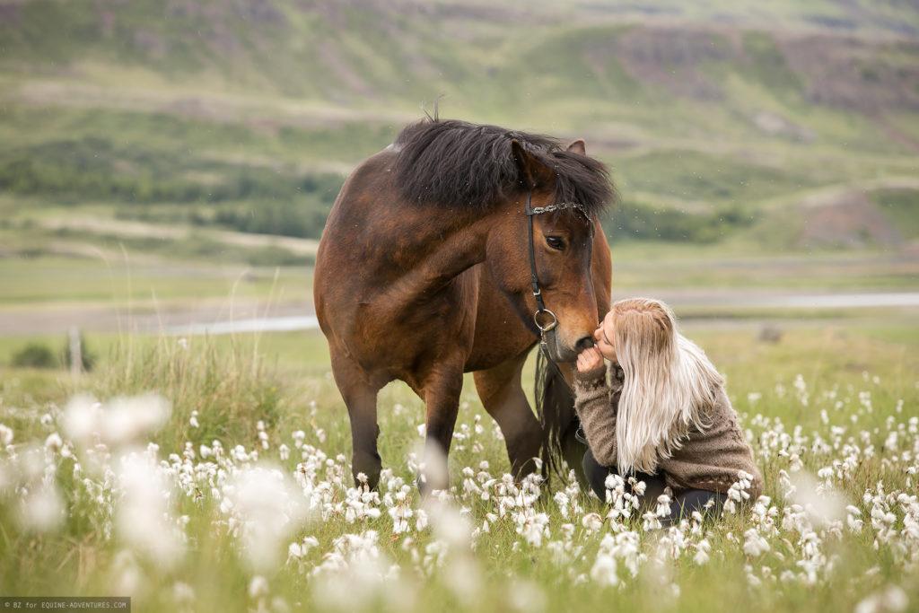 ea-fotoreise-island-frau-pferd-wollgras
