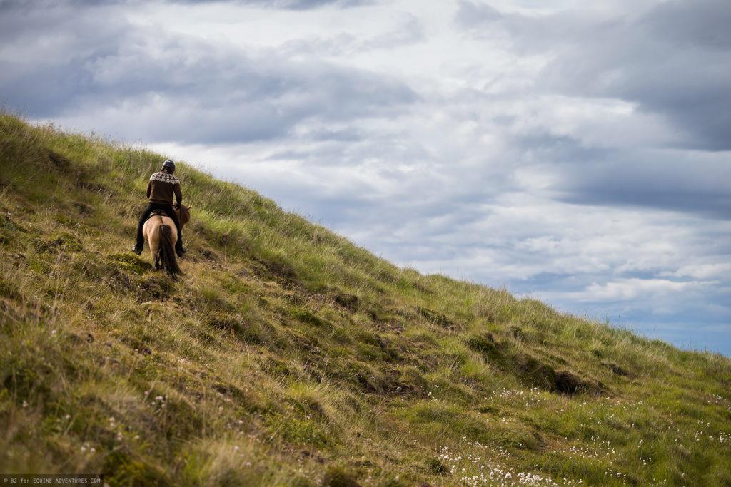 ea-fotoreise-island-horseman-reitend