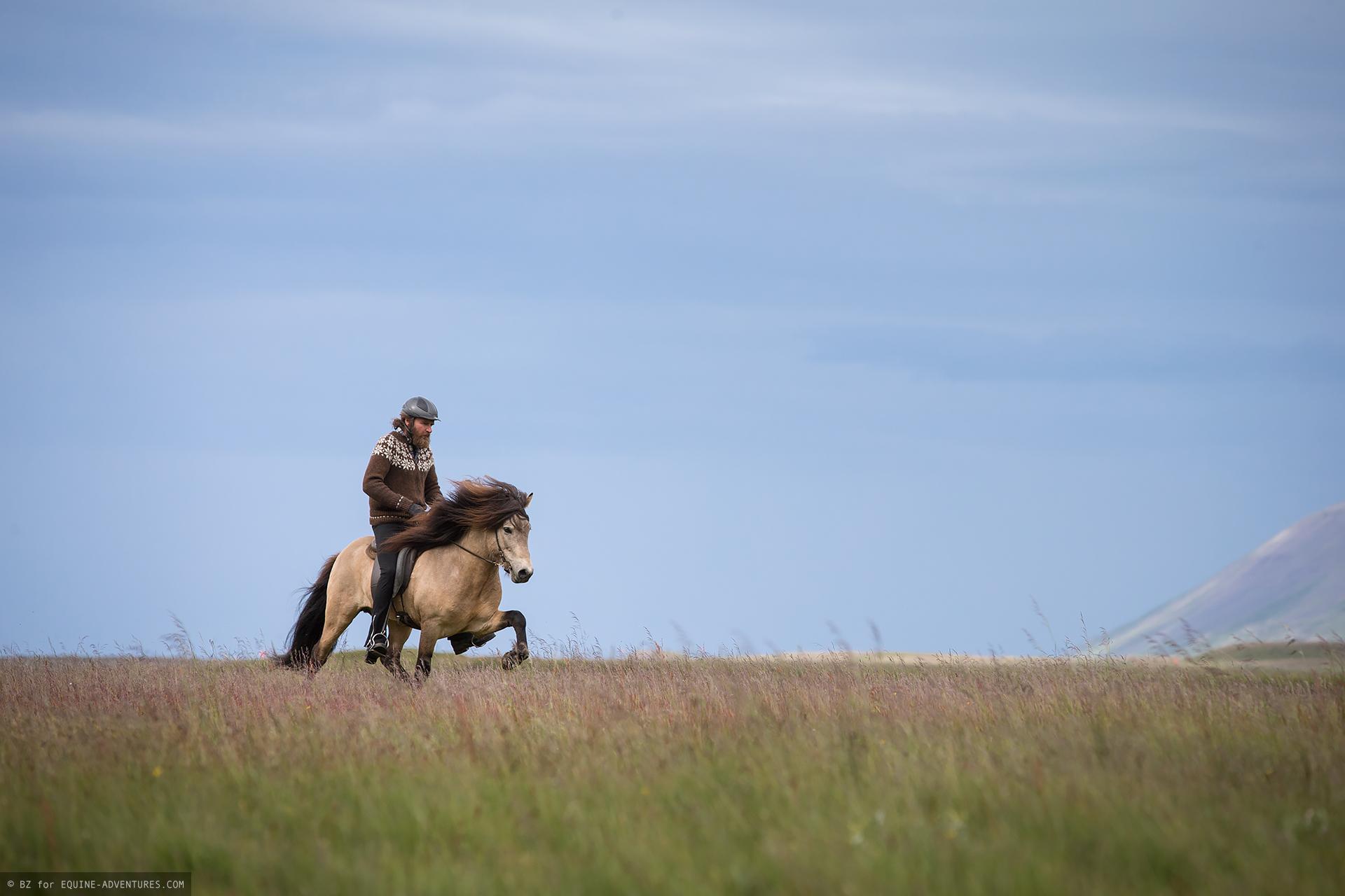 ea-fotoreise-island-horseman-reitend-wiese
