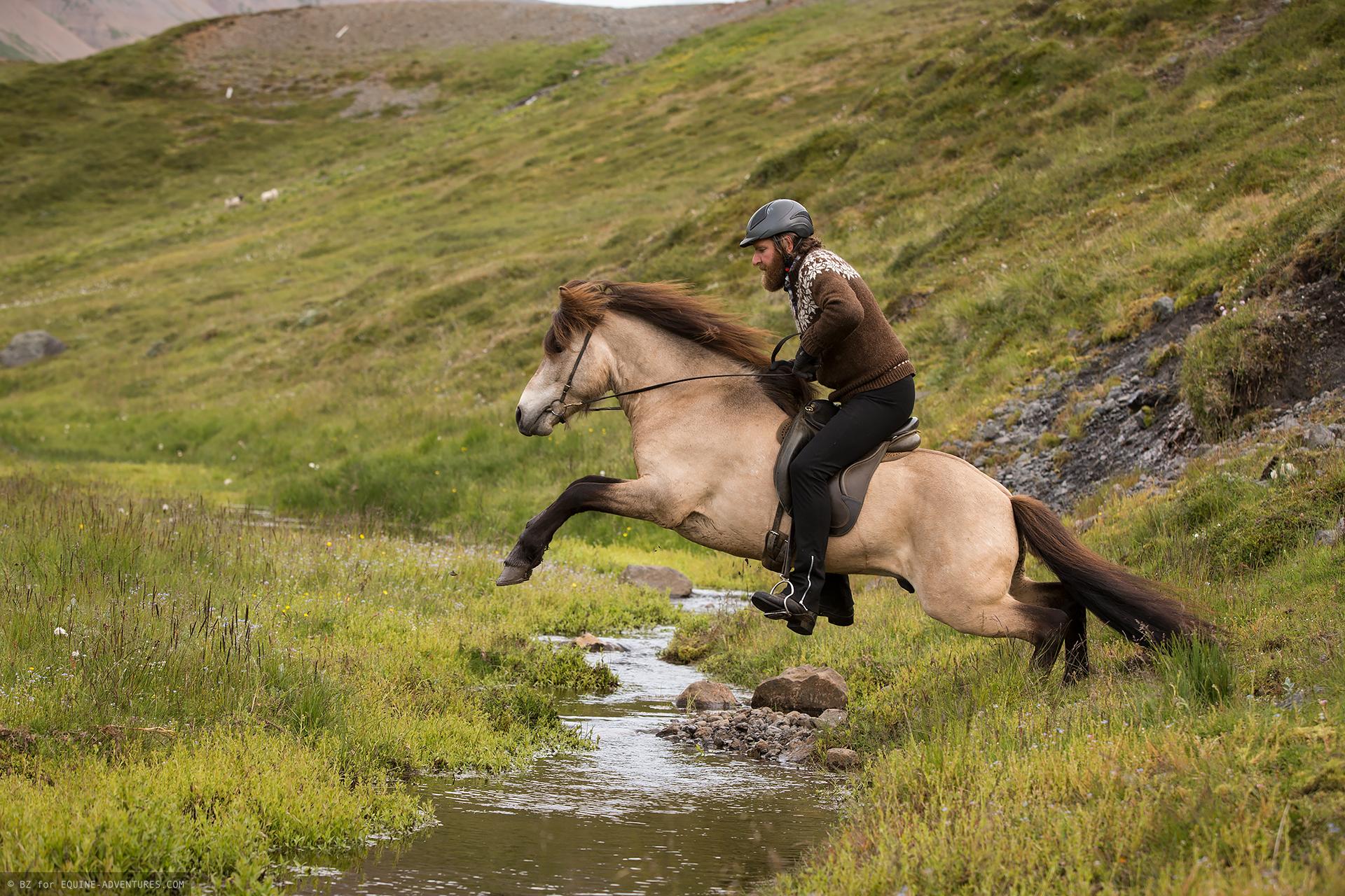 ea-fotoreise-island-horseman-sprung