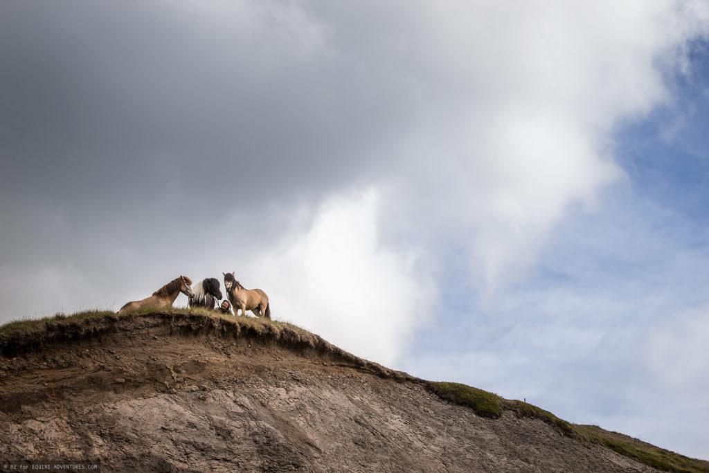 ea-fotoreise-island-horseman-ufer